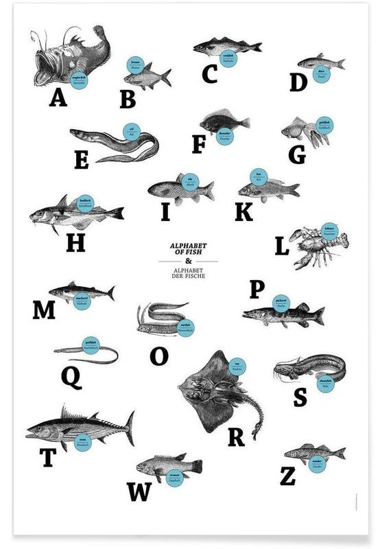 Poissons, alphabet of fish, animal ABC affiche