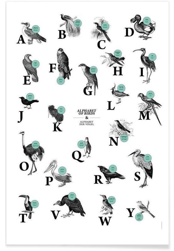 Alphabet et lettres, alphabet of birds, animal ABC affiche