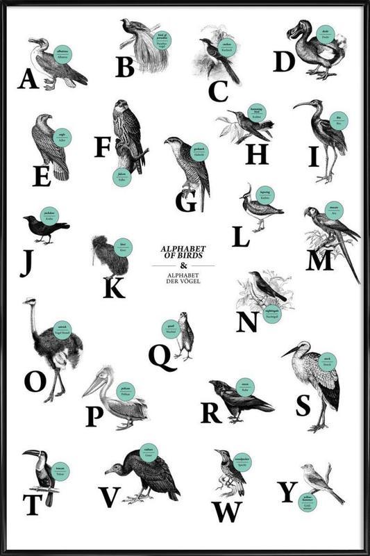 alphabet of birds, animal ABC Framed Poster