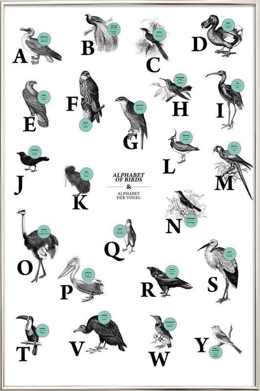 alphabet of birds, animal ABC poster in aluminium lijst