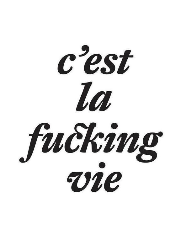 c'est la fucking vie Canvas Print