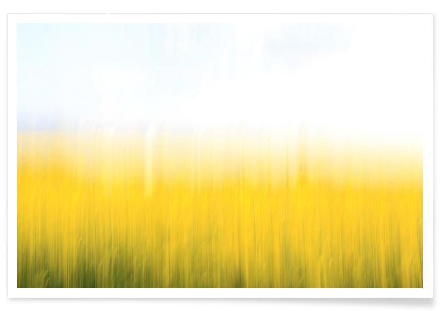 Abstrakte Landschaften, Fields Of Gold 99 -Poster