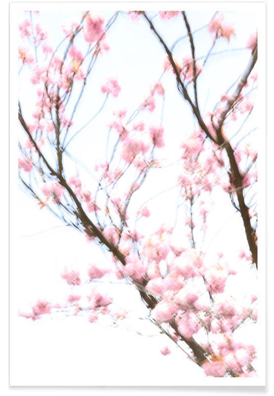 Leaves & Plants, Cherry Tree Poster