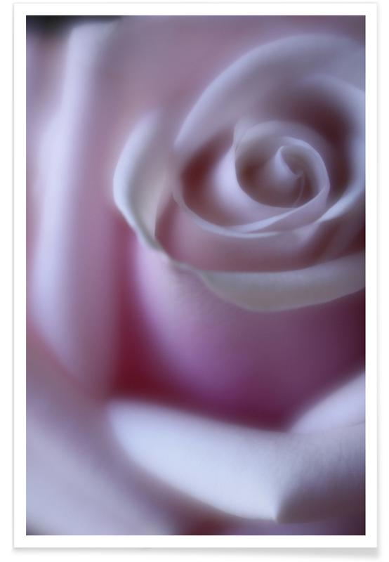 Rêve, Feuilles & Plantes, Rose affiche