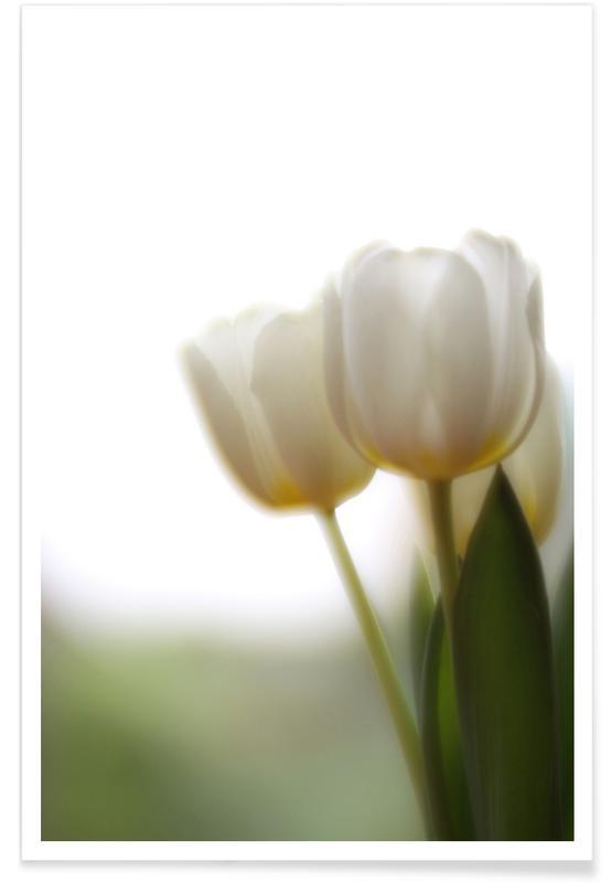 Dromerig, Bladeren en planten, Tulips poster