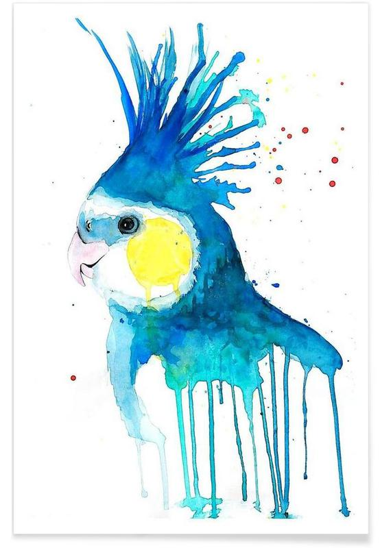 Papageien, Cockatiel -Poster