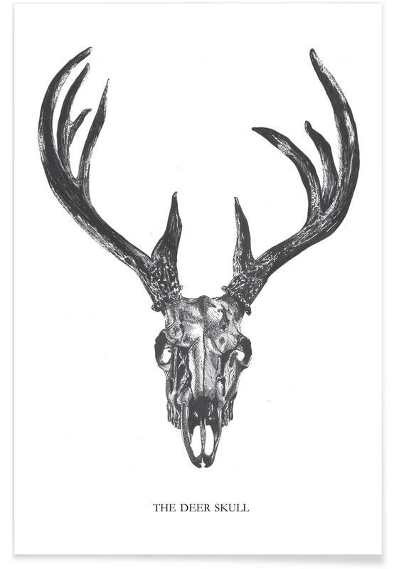 Crânes, Cerfs, Noir & blanc, The Deer Skull affiche
