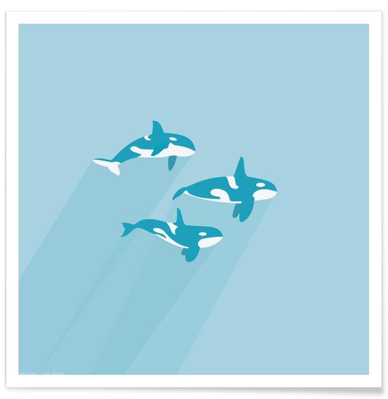 Baleines, Spækhugger affiche