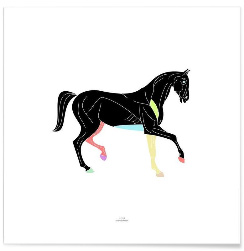 Schwarz & Weiß, Pferde, Prn 01 -Poster