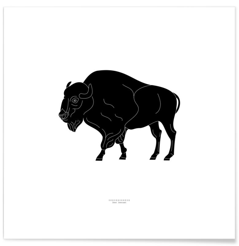Schwarz & Weiß, Büffel, Skedehornede Black -Poster