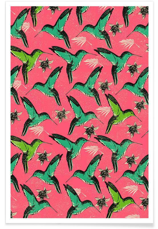 Patterns, Hummingbirds, Humming Birds Poster