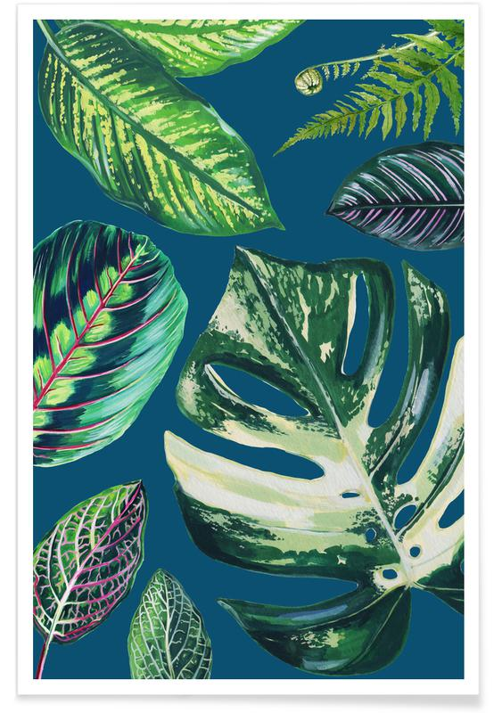 Leaves & Plants, Navy Mixed House Plants Poster
