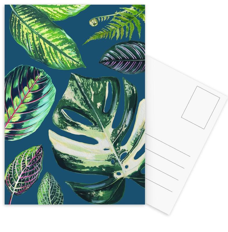 Leaves & Plants, Navy Mixed House Plants Postcard Set