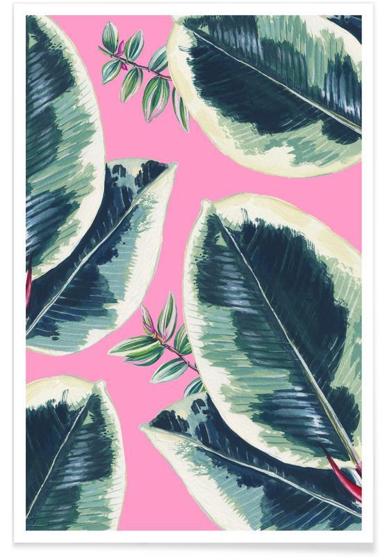 Leaves & Plants, Rubber Plant Poster
