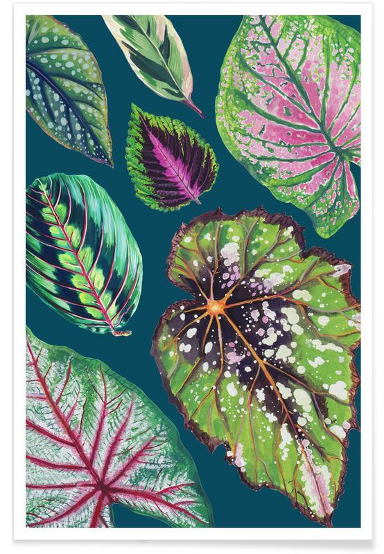 Blätter & Pflanzen, Teal Mixed Houseplants -Poster