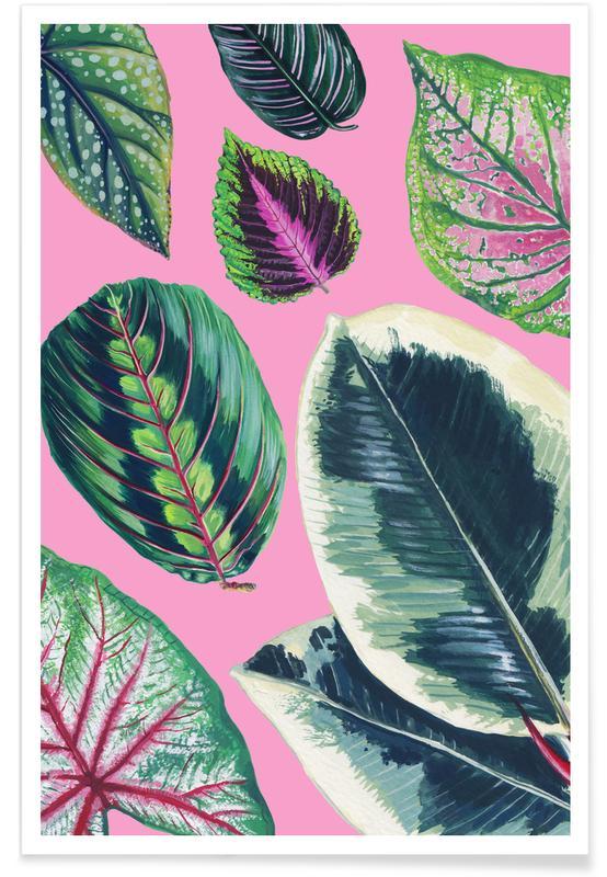 Blätter & Pflanzen, Pink Mixed Houseplant -Poster