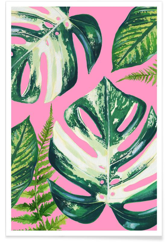 Leaves & Plants, Cheeseplant House Plant Poster