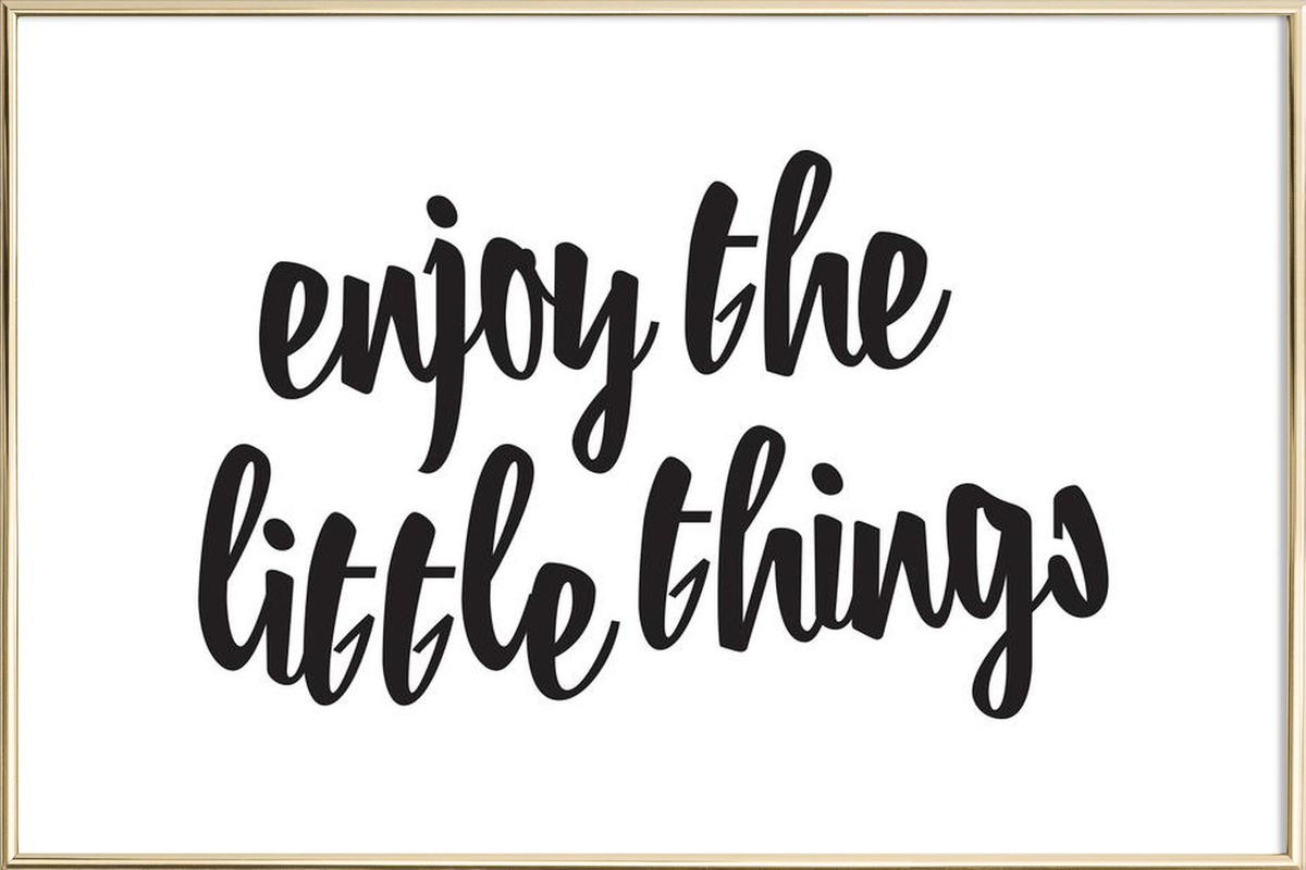 Enjoy The Little Things Poster in Aluminium Frame