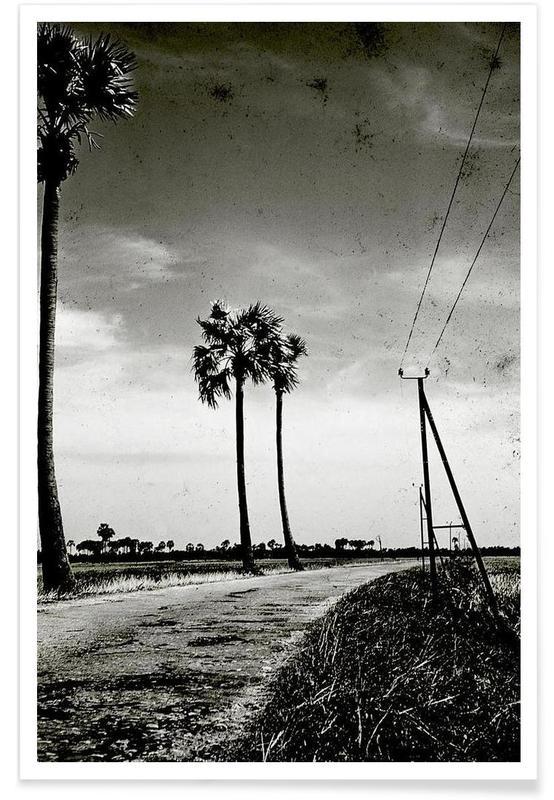Black & White, Palms, Far Away Poster