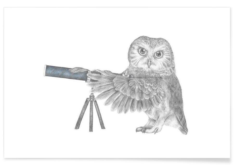 Ugler, Owl Drawing Plakat