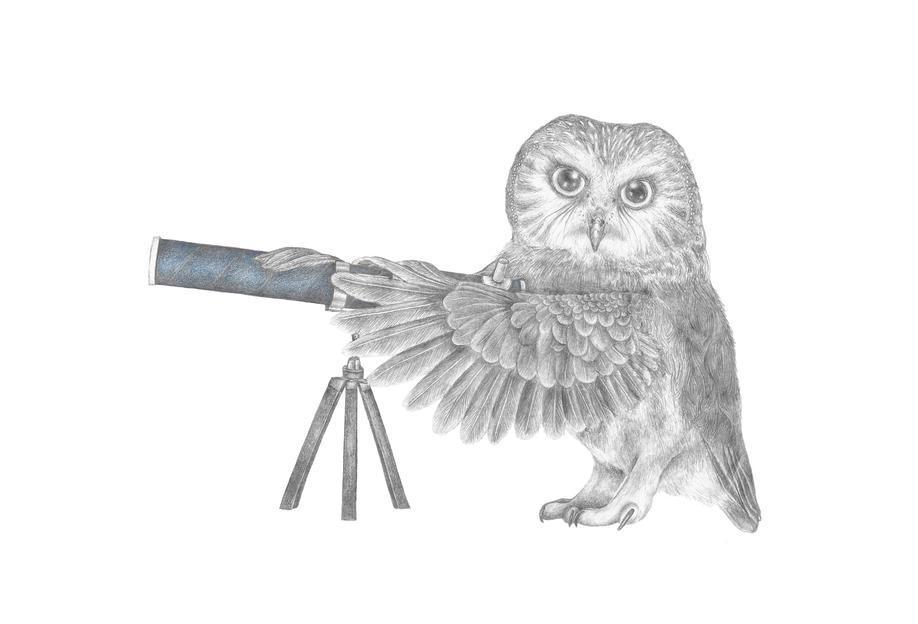 Pearl Papineau Saw Whet Owl -Alubild