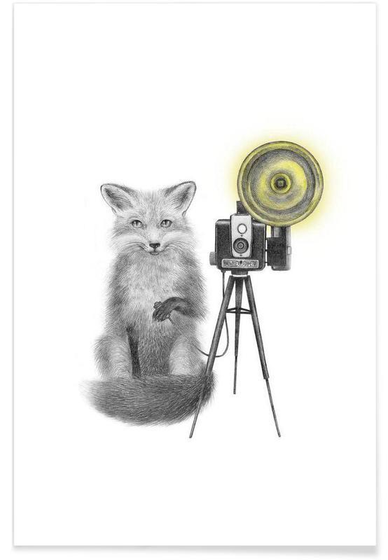 Ræve, Sort & hvidt, Fox Drawing Plakat