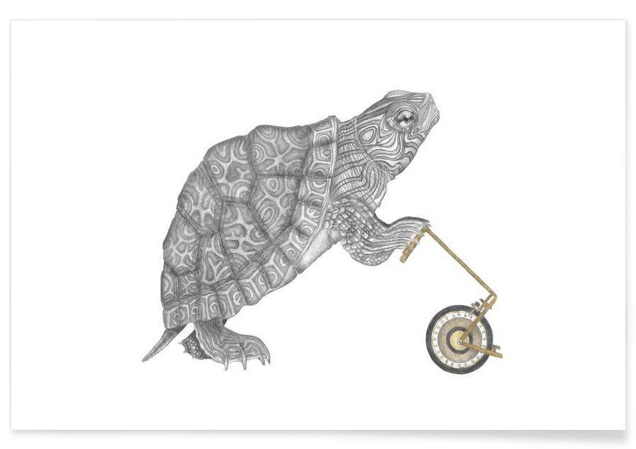 Tortoise Drawing Poster