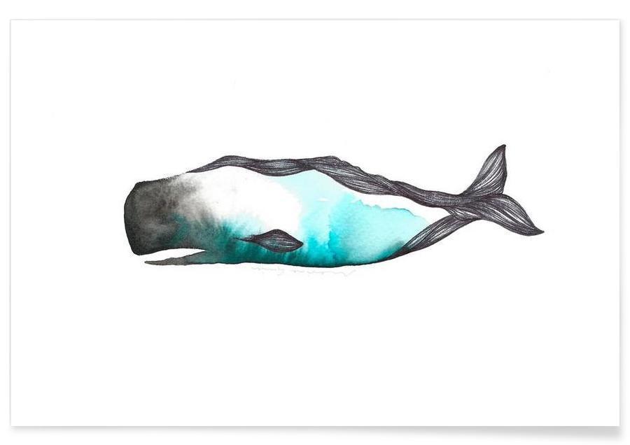 Baleines, Catxalot affiche