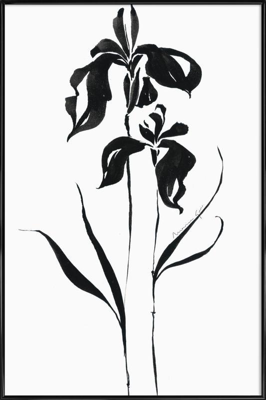 Orchid 4 affiche encadrée