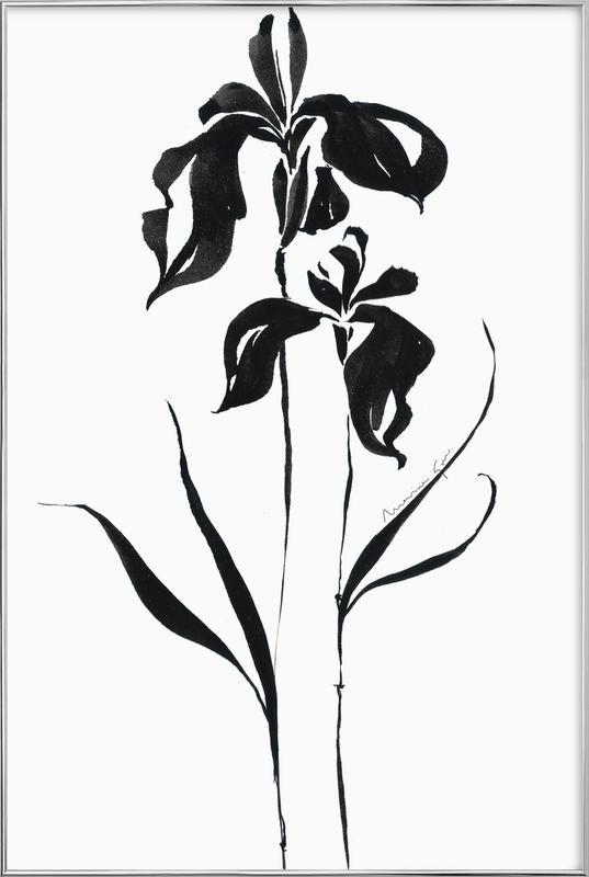 Orchid 4 affiche sous cadre en aluminium