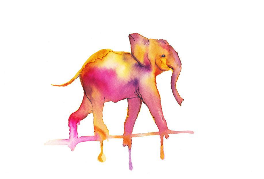 Elephant -Acrylglasbild
