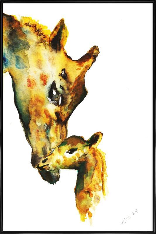 Giraffes Framed Poster