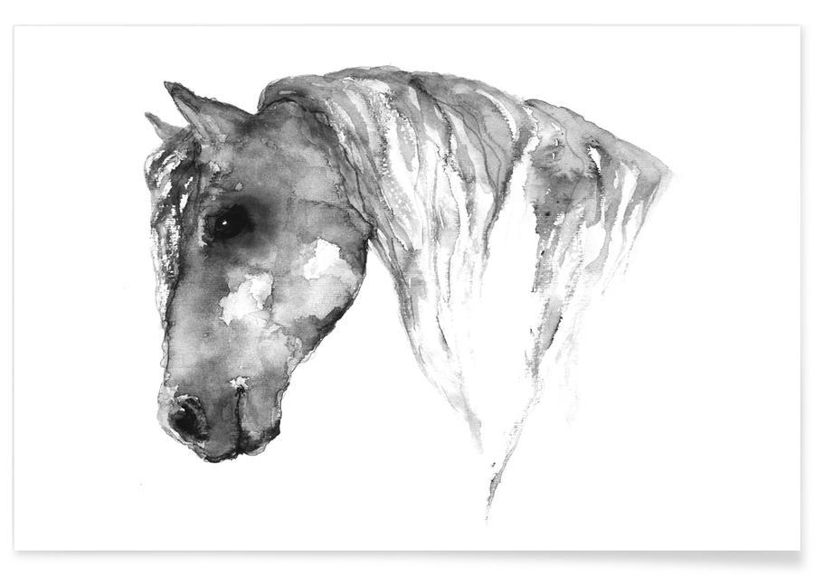 Cheval gris - Aquarelle affiche