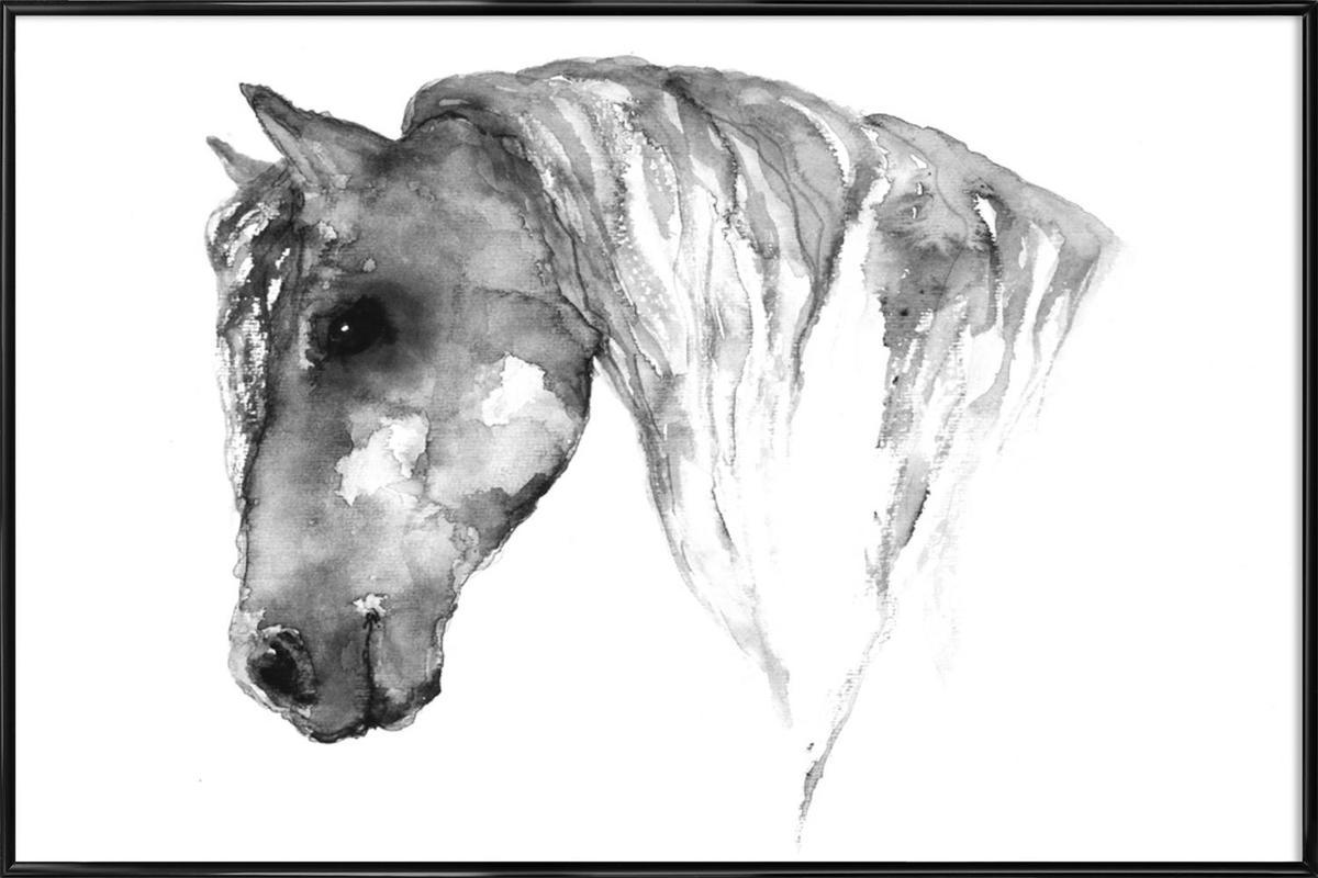 Grey Horse ingelijste poster