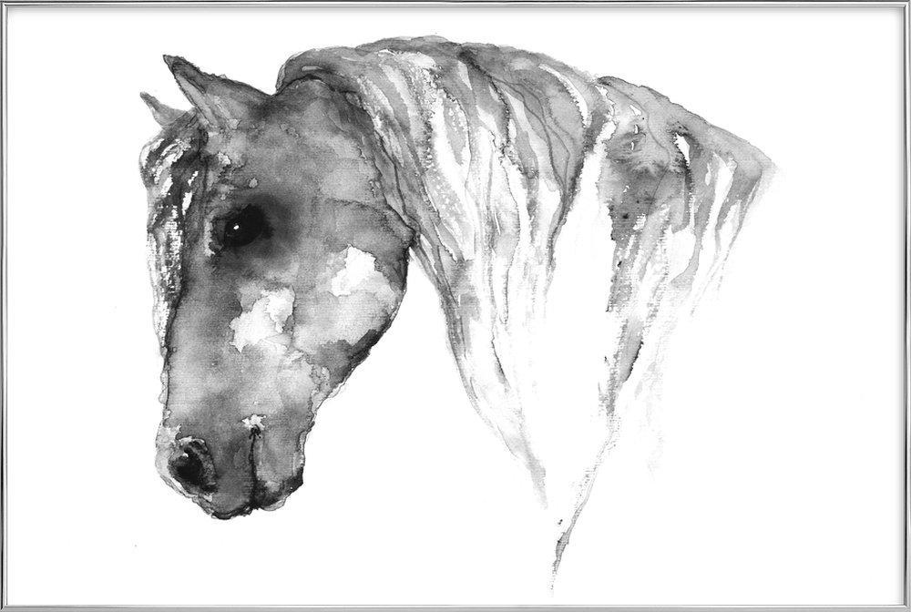 Grey Horse poster in aluminium lijst