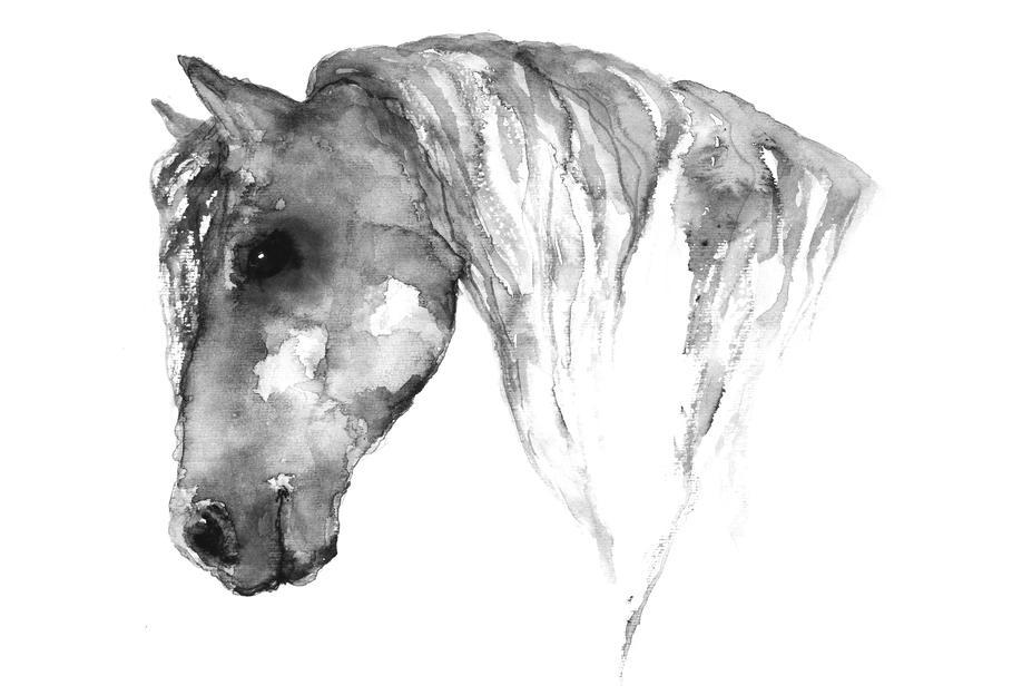 Grey Horse -Acrylglasbild