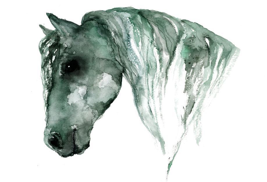 Horse -Acrylglasbild