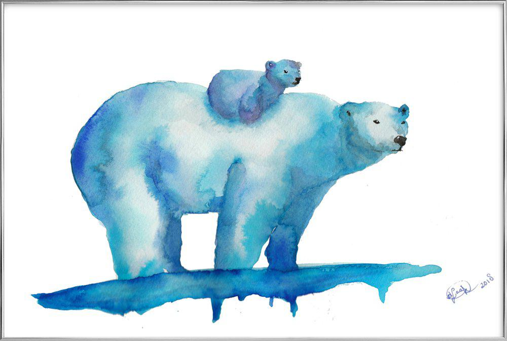 Polar Bears -Poster im Alurahmen