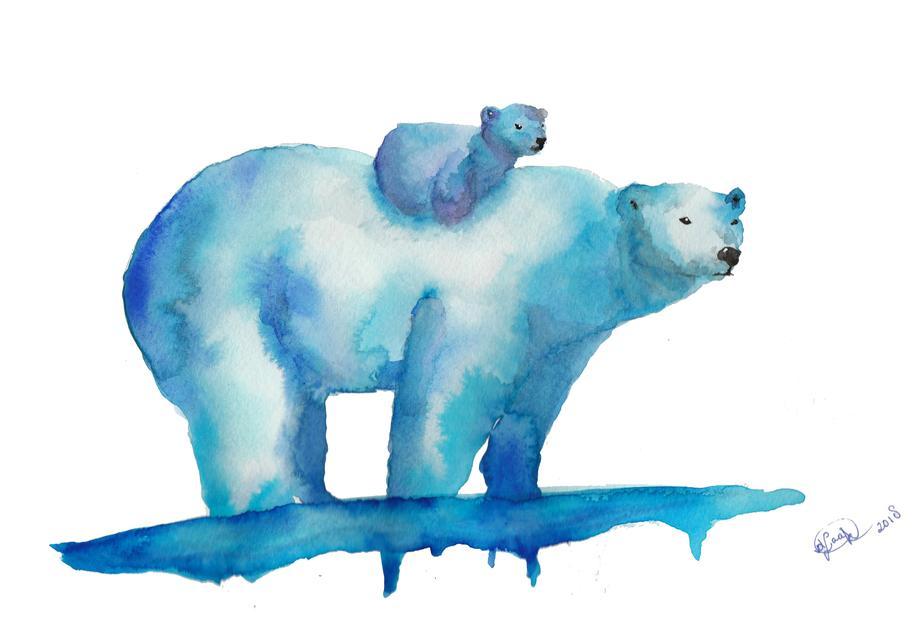 Polar Bears Aluminium Print