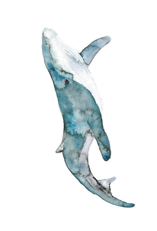 Whale Aluminium Print