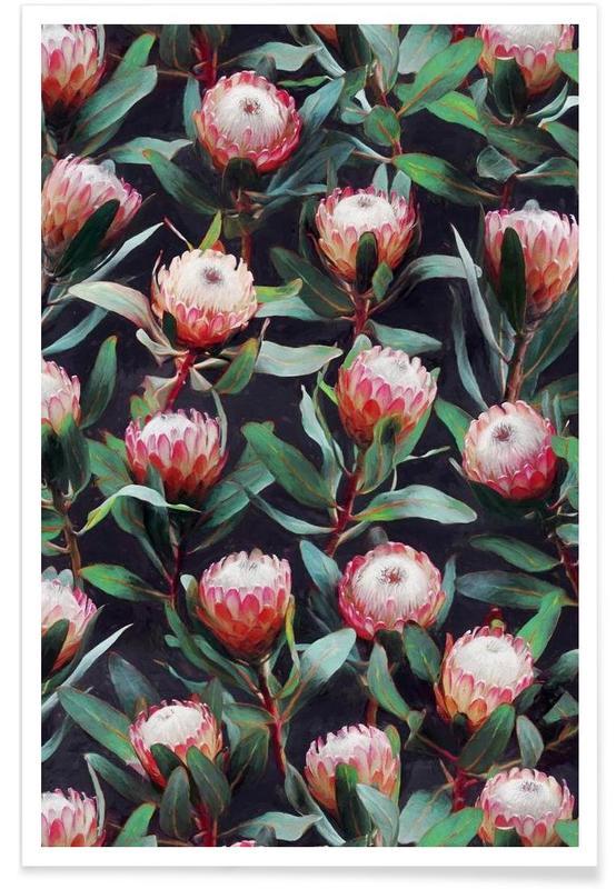 , Avond Proteas kleur - patroon poster