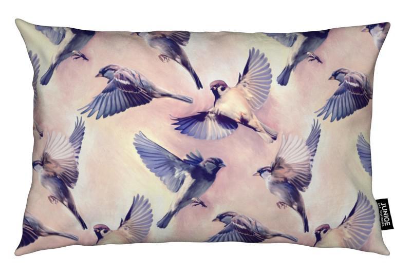 , Sparrow Flight