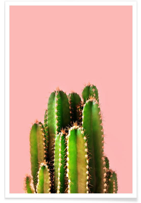 Cactus Time Poster