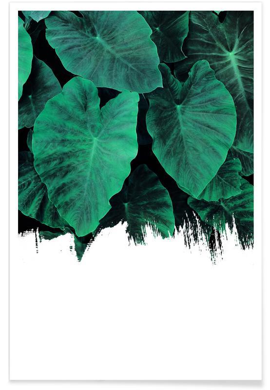 Jungle affiche