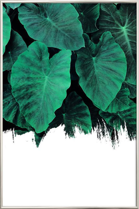 Jungle Poster in Aluminium Frame