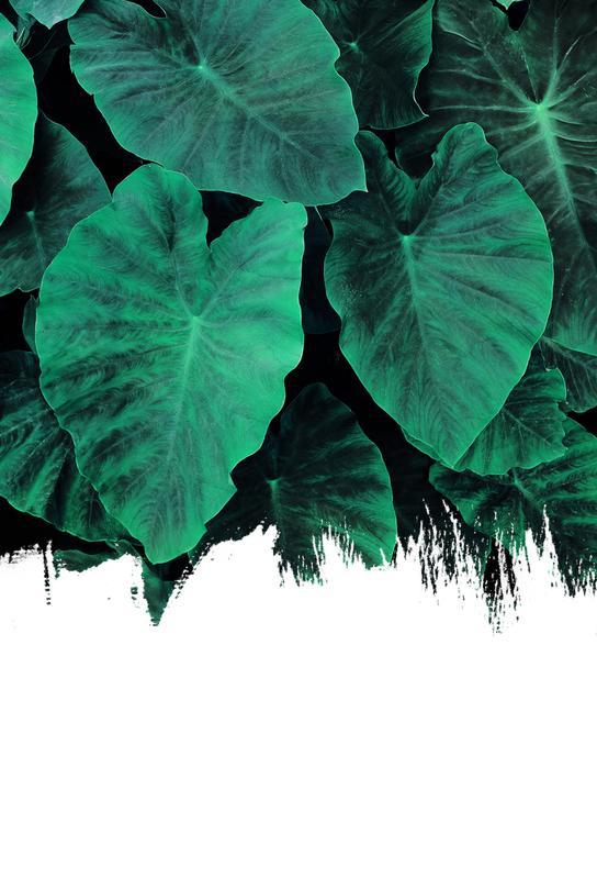 Jungle Aluminium Print