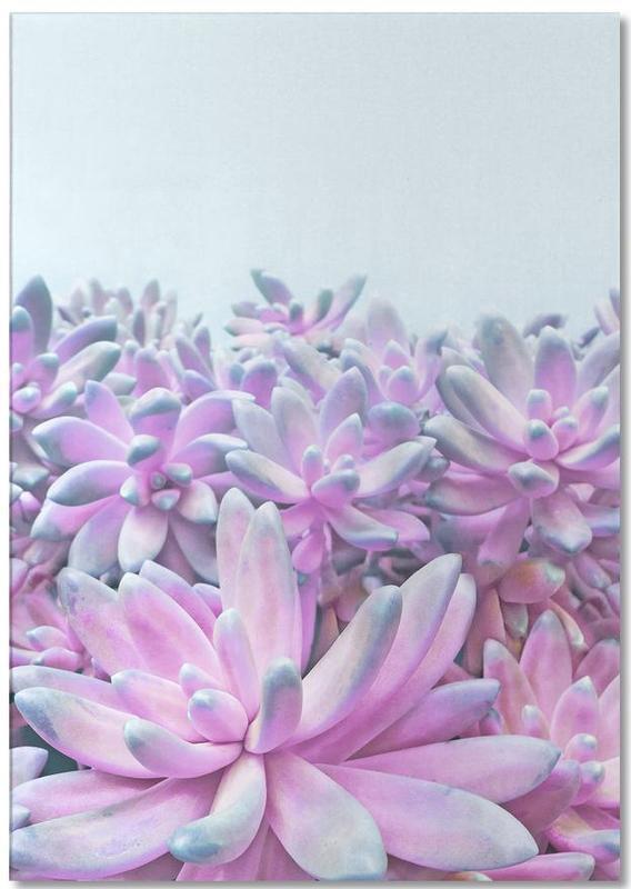 Sweet Succulents -Notizblock