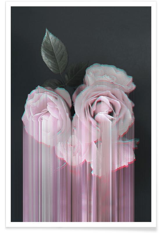 Roses, Fall in Rose Poster