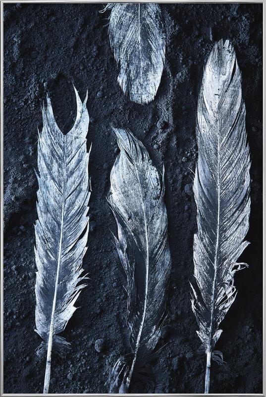 Federn -Poster im Alurahmen