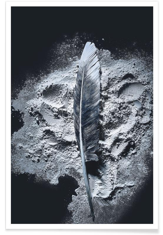 Black & White, Feathers, Federn 3 Poster